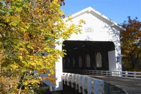 Things To Do In Cottage Grove Oregon by Dorena Lake Picture Of Cottage Grove Covered Bridge Tour