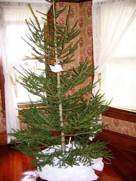 decorating a christmas tree to look old fashioned fashioned tree 1940 s style oldhouseguy