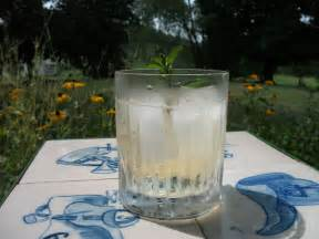 a thirst quenching summer tonic upstate downtown