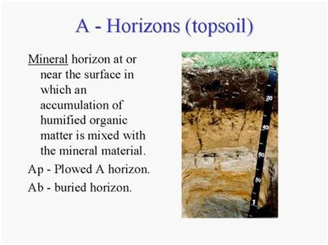 soil science digital textbook library