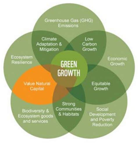Sustainability A History Of Green Entrepreneurship Paket 3 Ebook five facts you should about green in africa green growth knowledge platform