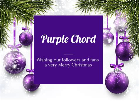 purple blog  purple chord classic drums cymbals