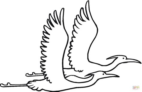 flying parrot coloring pages flying bird coloring www pixshark com images galleries