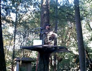 Hunting Shack Floor Plans Zip Platforms