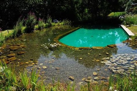 natural pools pools out for summer chlorine mnn mother nature network