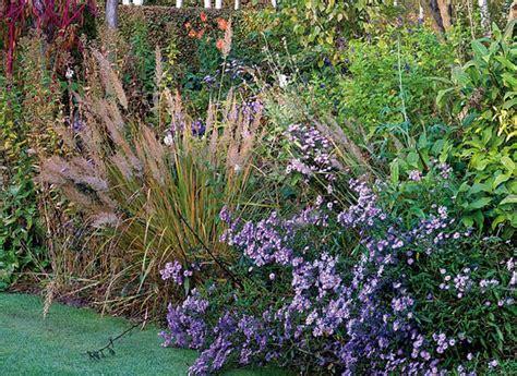 Plantation De Novembre les plantations de novembre au jardin