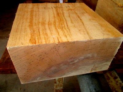 thick birch bowl blank turning block lumber wood carve