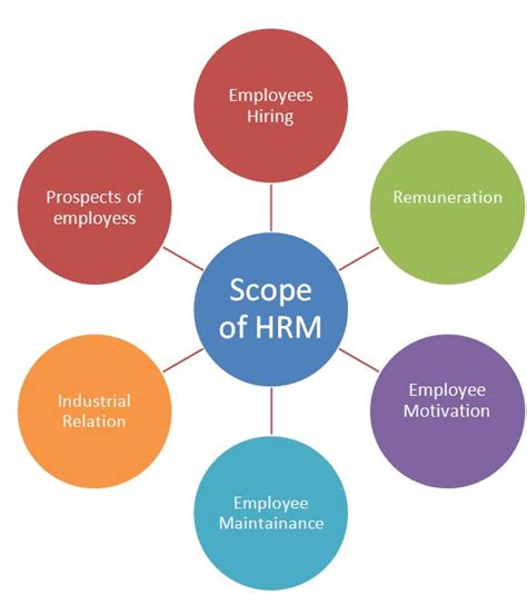 resource diagram scope of human resource after doing mba in hr mba india
