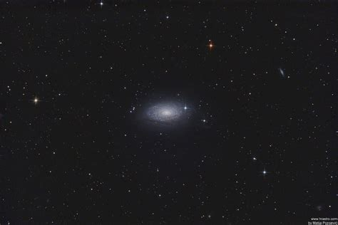 sunflower galaxy m63 sunflower galaxy astrophotography by hrastro