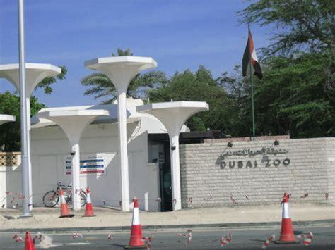 emirates zoo entry fee dubai zoo timings 171 bestindubai