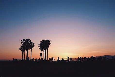 summer lovin cream coal venice beach summer nights