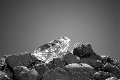 the diamond and the coal