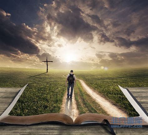 my path of faith a s journey learning how to see live and through jesus books 走在通往十字架的小路上高清图片下载 非凡图库