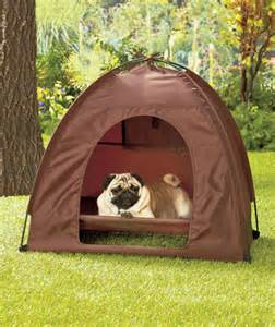 large pet bed and tent set cat outdoor yard lawn