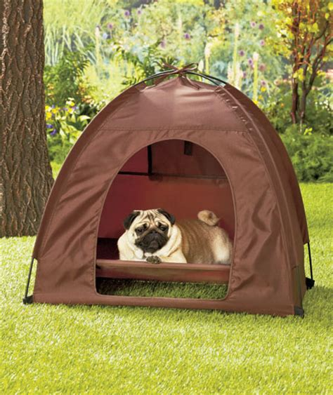 dog tent bed small pet bed and tent set dog cat outdoor yard lawn