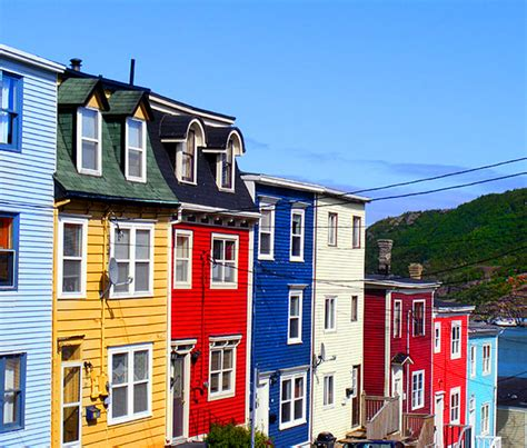 St Johns Mba Deadline by Newfoundland And Labrador Road Trip By Naturetrek Canada