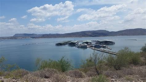 lake pleasant az boat rentals scorpion bay maracay homes at the meadows a short drive to lake pl