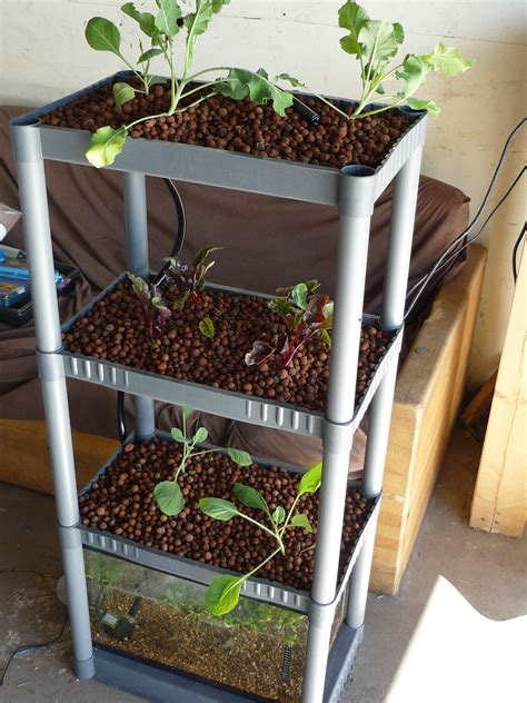 backyard aquaponics system 12 diy aquaponics system for indoor and backyard the