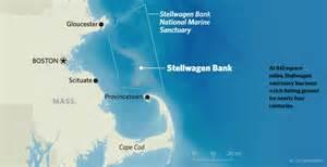 bank fishing map whale hyannis message board tripadvisor
