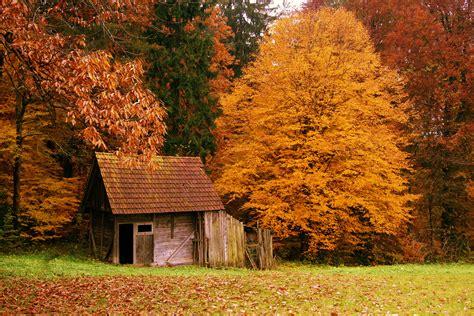 Home Decor Orange County by Autumn Scenes Desktop Wallpaper