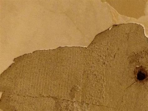 ceiling repair is this rock lath with lime plaster water