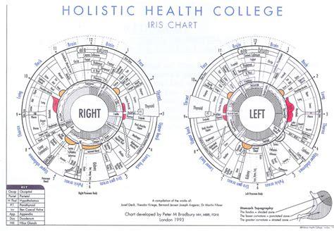 the basics of iridology 3 markings books chart to iridology