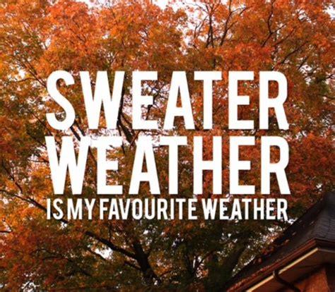 girly autumn wallpaper autumn fall girly sweater sweater weather image