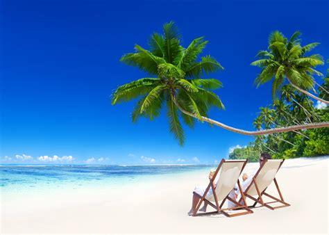 tropical paradise beach coast sea blue emerald ocean palm