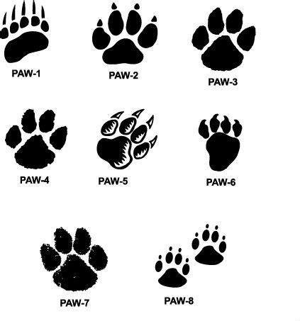 tiger paw tattoo tiger paw prints walking drawing paw prints