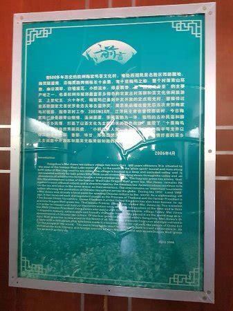 Teh Longjing longjing tea fields hangzhou china beoordelingen
