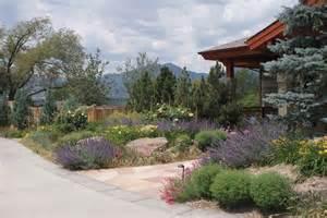 Landscape Design Sacramento Drought Tolerant Landscaping Cool California Landscape