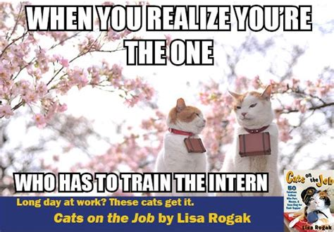 Intern Meme - intern meme related keywords intern meme long tail