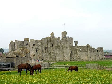 the nevills of middleham s most powerful family in the war of the roses books p蝎es 1000 n 225 pad蟇 na t 233 ma motte and bailey castle na