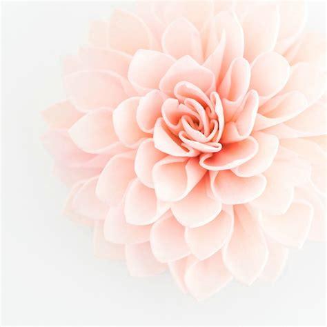 Flower Decor For Wedding by 10 Blush Wooden Flowers Wedding Decorations Wedding