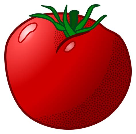 clipart image tomato clipart clipart panda free clipart images