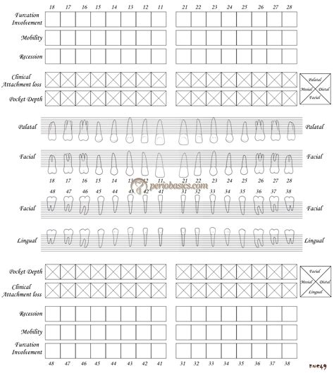 periodontal chart template periodontal history taking including patient and