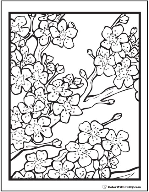 cherry blossom coloring pages 42 coloring pages customize printable pdfs
