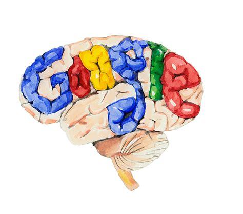 google images brain google brain