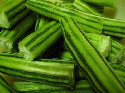 Stek Batang Kambojajepunplumeria Kode Jb08 stek batang kelor belum berakar jual tanaman hias