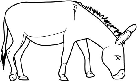free coloring page donkey drawn donkey colouring pencil and in color drawn donkey