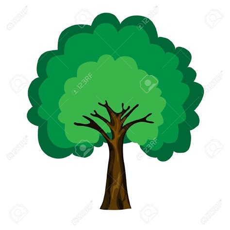 albero clipart deciduous trees clipart clipground