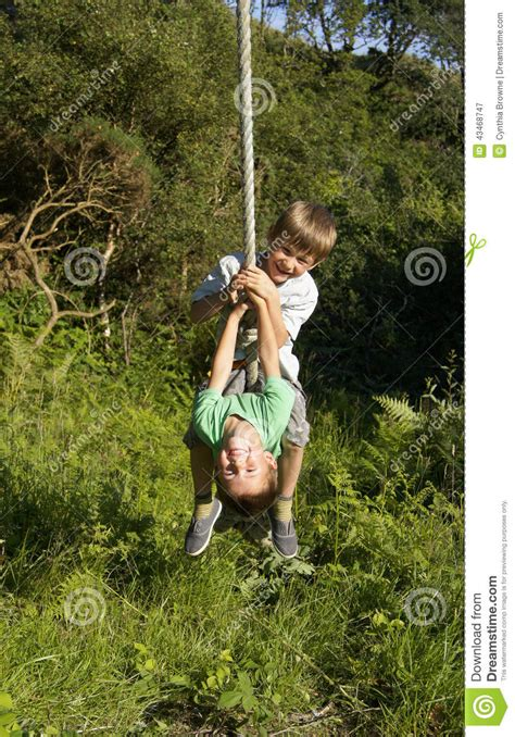 swing attached to tree two young boys on rope swing stock image image 43468747