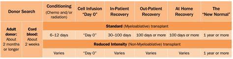 100 days after stem cell transplant transplant process