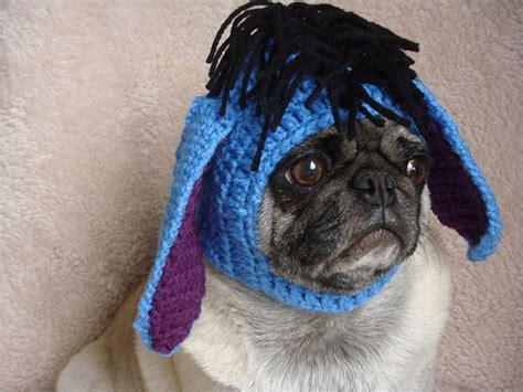sad pug sad pug is the model for these silly hats 16 pics pleated