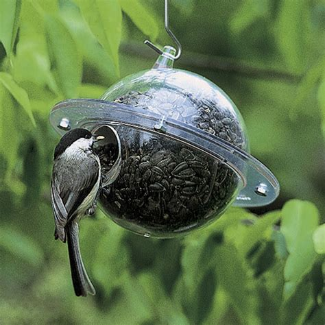 duncraft com duncraft 650 satellite bird feeder