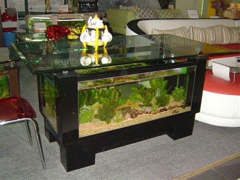 Coffee Table Aquarium For Sale with Aquarium Coffee Table For Sale Roy Home Design