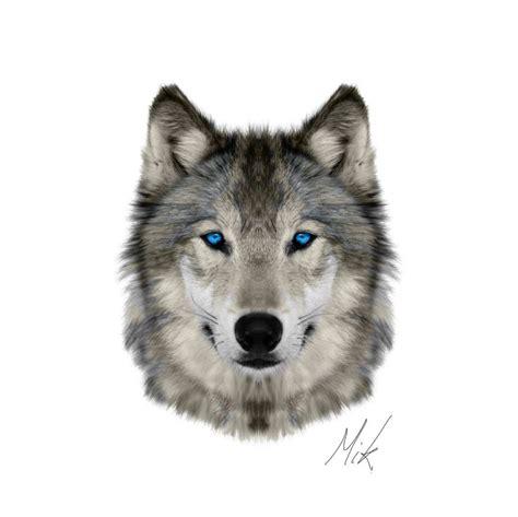 best 25 wolf range ideas on pinterest wolf oven wolf best 25 wolf face ideas on pinterest snow wolf wolf