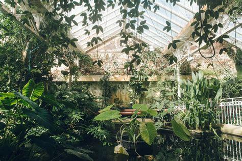 the botanical gardens birmingham birmingham botanical gardens haarkon photography