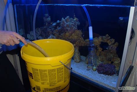 freshwater fish tank cleaning how to clean a freshwater