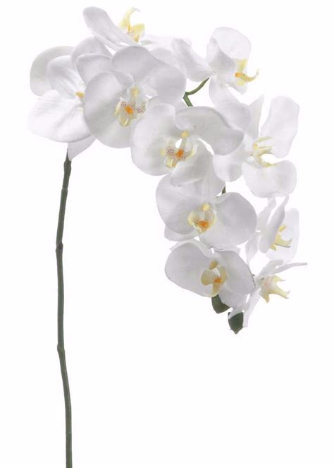 white phalaenopsis silk orchid floral design o131 white phalaenopsis orchid spray silk wedding flowers